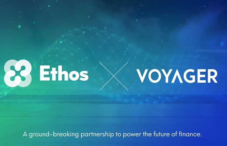 ethos-voyager-price-prediction-vgx-for-2021-2022-2025[1]