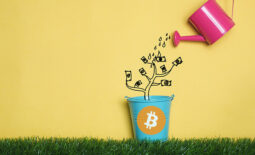 what-is-bitcoin-and-is-it-worth-investing-in-bitcoin-in-2021[1]